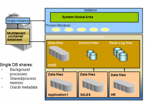 Multitenant Architecture