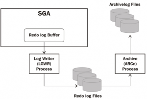 archive log files