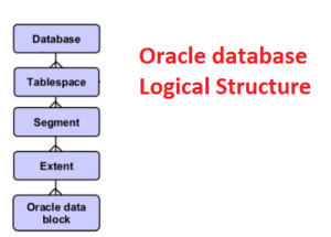oracle database logical structure