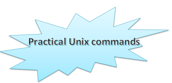 basic unix commands pdf